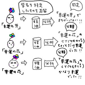 seiyu-3